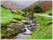27th Oct 2017 - Carding Mill Valley nr. Church Stretton