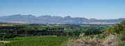 28th Oct 2017 - Tulbagh Valley