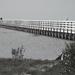 Greys Beach Boardwalk