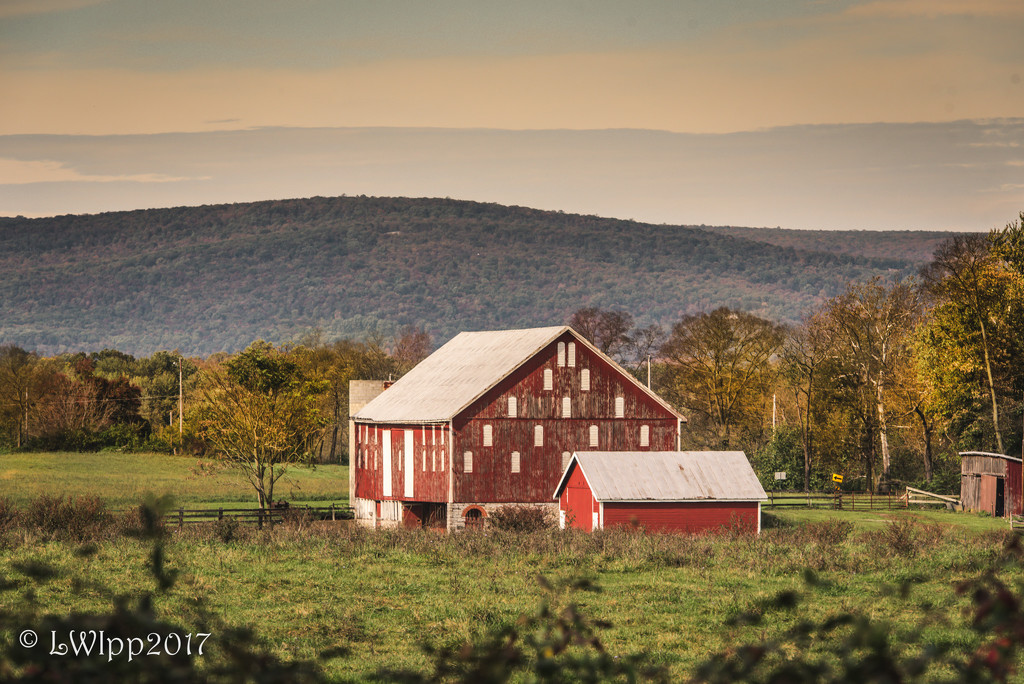 What's A Farm Without A Barn  by lesip
