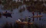 9th Oct 2017 - 09 Lake Titicaca Reed Boats, Peru