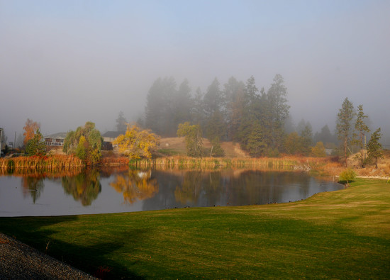 Foggy Morning by gq