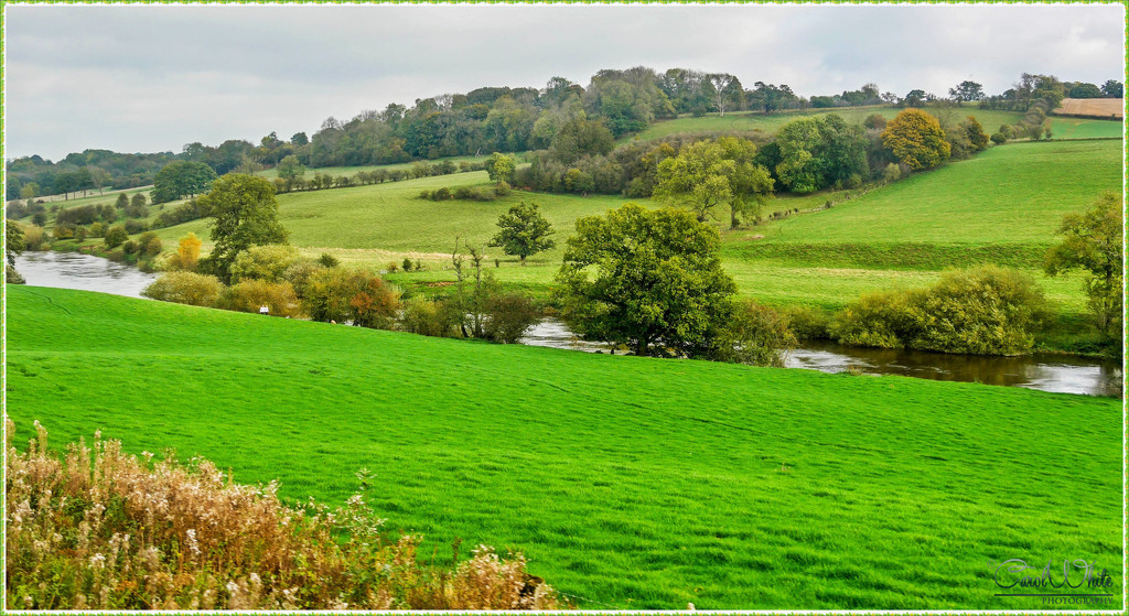 A View Of The Severn Valley by carolmw