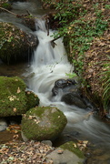 30th Oct 2017 - Mossy boulders and stream...