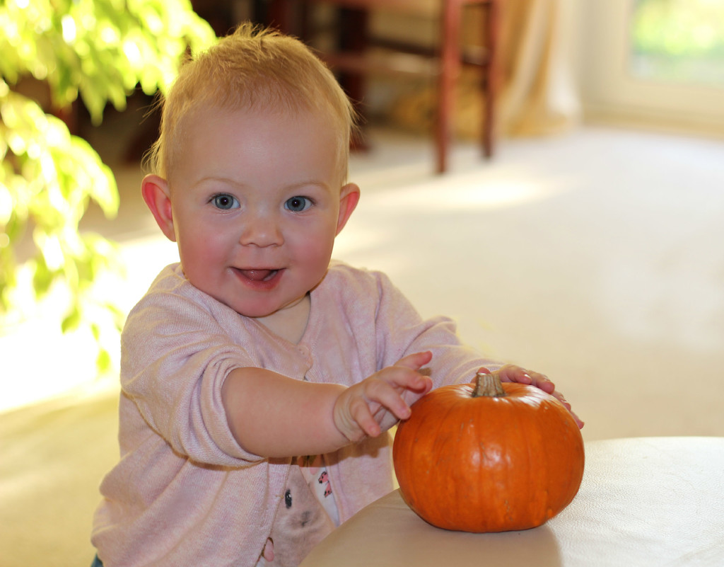 My Little Pumpkin. by wendyfrost