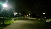 31st Oct 2017 - Park by night