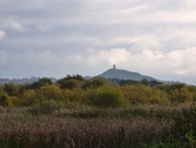 1st Nov 2017 - Glastonbury Tor from the Avalon marshes
