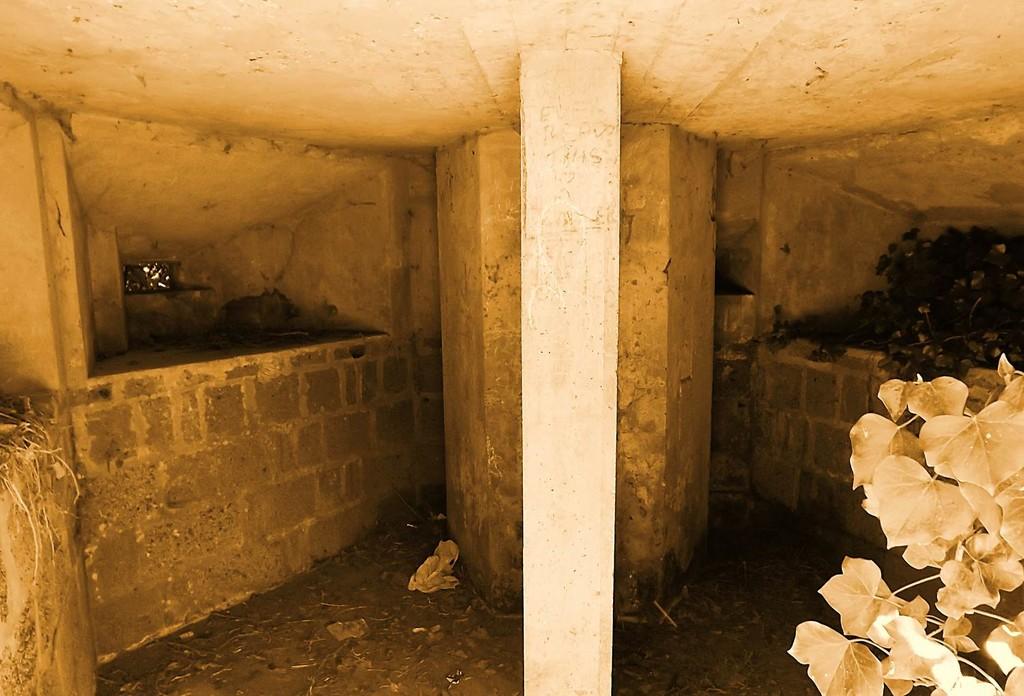 Bunker  by ajisaac