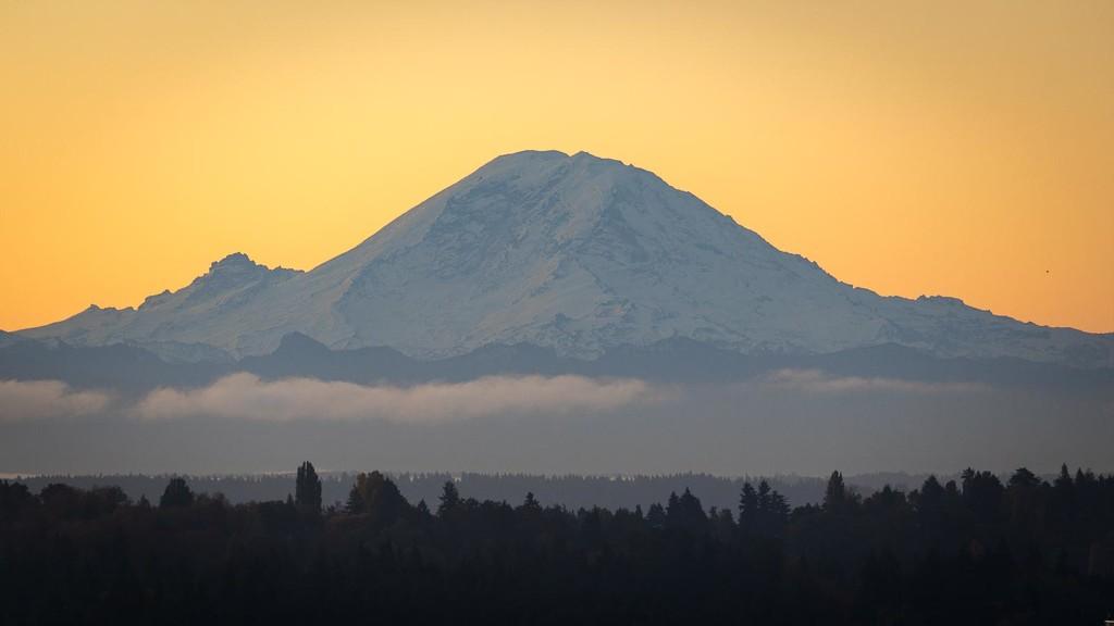 Mount Rainier in the Morning by jyokota