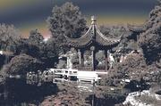 3rd Nov 2017 - Chinese Garden