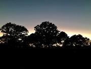 3rd Nov 2017 - A Texas sunset
