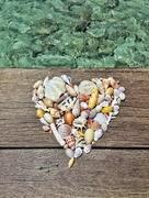 4th Nov 2017 - Heart of shells.