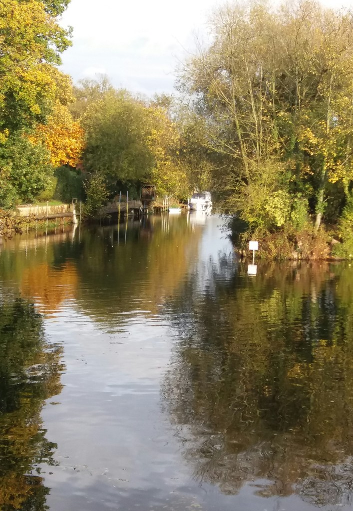 River Great Ouse by mave