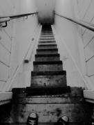 4th Nov 2017 - The attic stairs ...👻