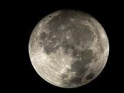 3rd Nov 2017 - Beaver Moon on November 3rd
