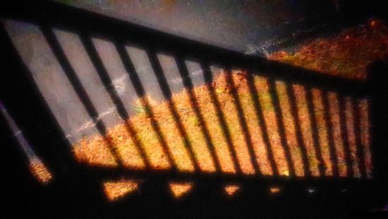 Night Shot by joansmor