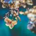 deep sea diving by pistache