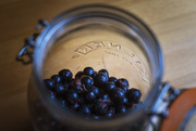 2nd Oct 2017 - Day 275, Year 5 - Sweet Sloes