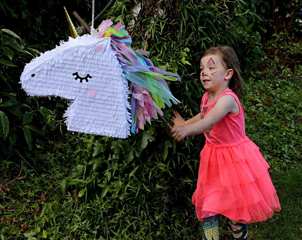 Unicorns and fairies by kiwinanna