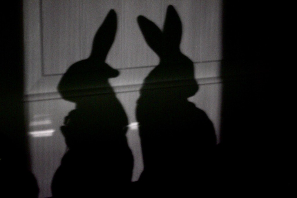 Silent Treatment as Portrayed by Bunnies by jnorthington