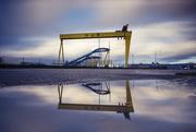 21st Oct 2017 - Day 294, Year 5 - Harland & Wolff, Belfast