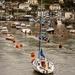 Looe boats