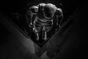 11th Nov 2017 - Looking Down