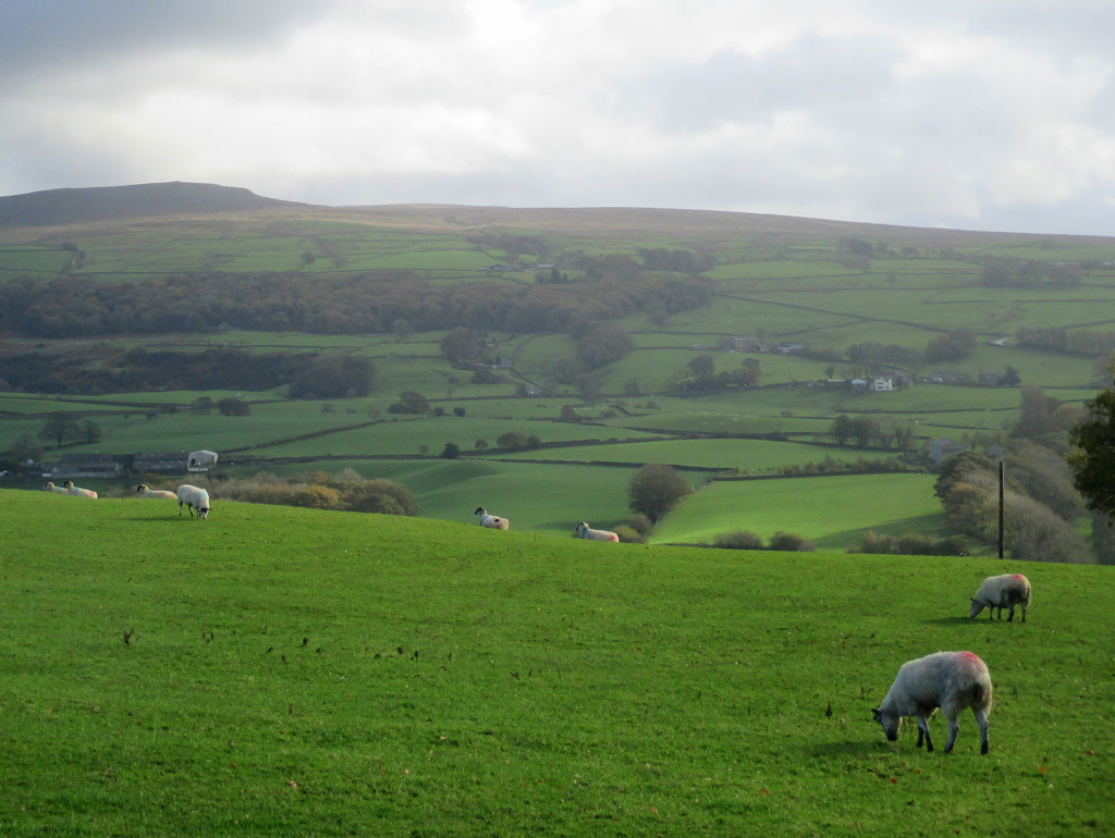 Catch up 1 - Lovely Lancashire by filsie65
