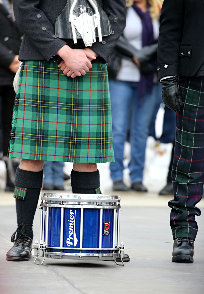 Green Plaid and Drum by gq