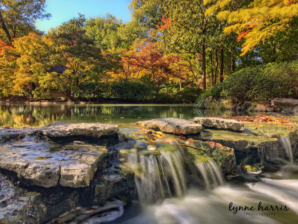 Japanese Gardens - iPhone by lynne5477