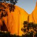 Sun glowing on Uluru