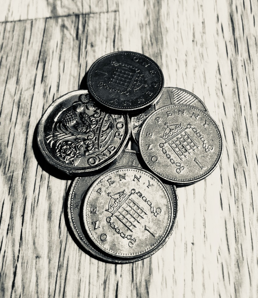 Pennies and pounds  by 365projectdrewpdavies