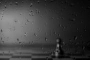 15th Nov 2017 - raindrops keep falling on my head...