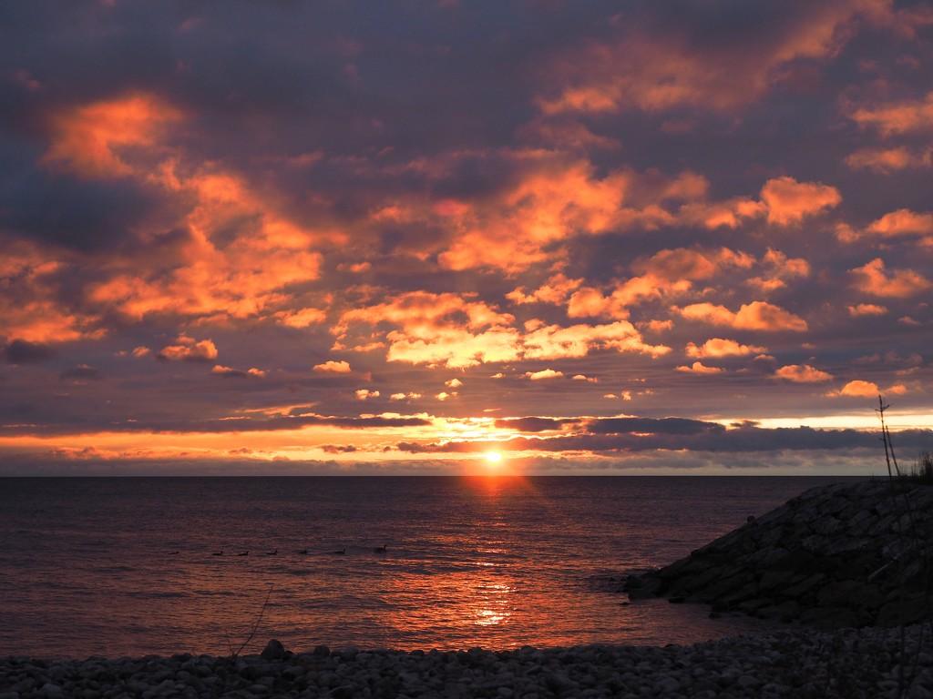 Surprise Sunrise! by selkie