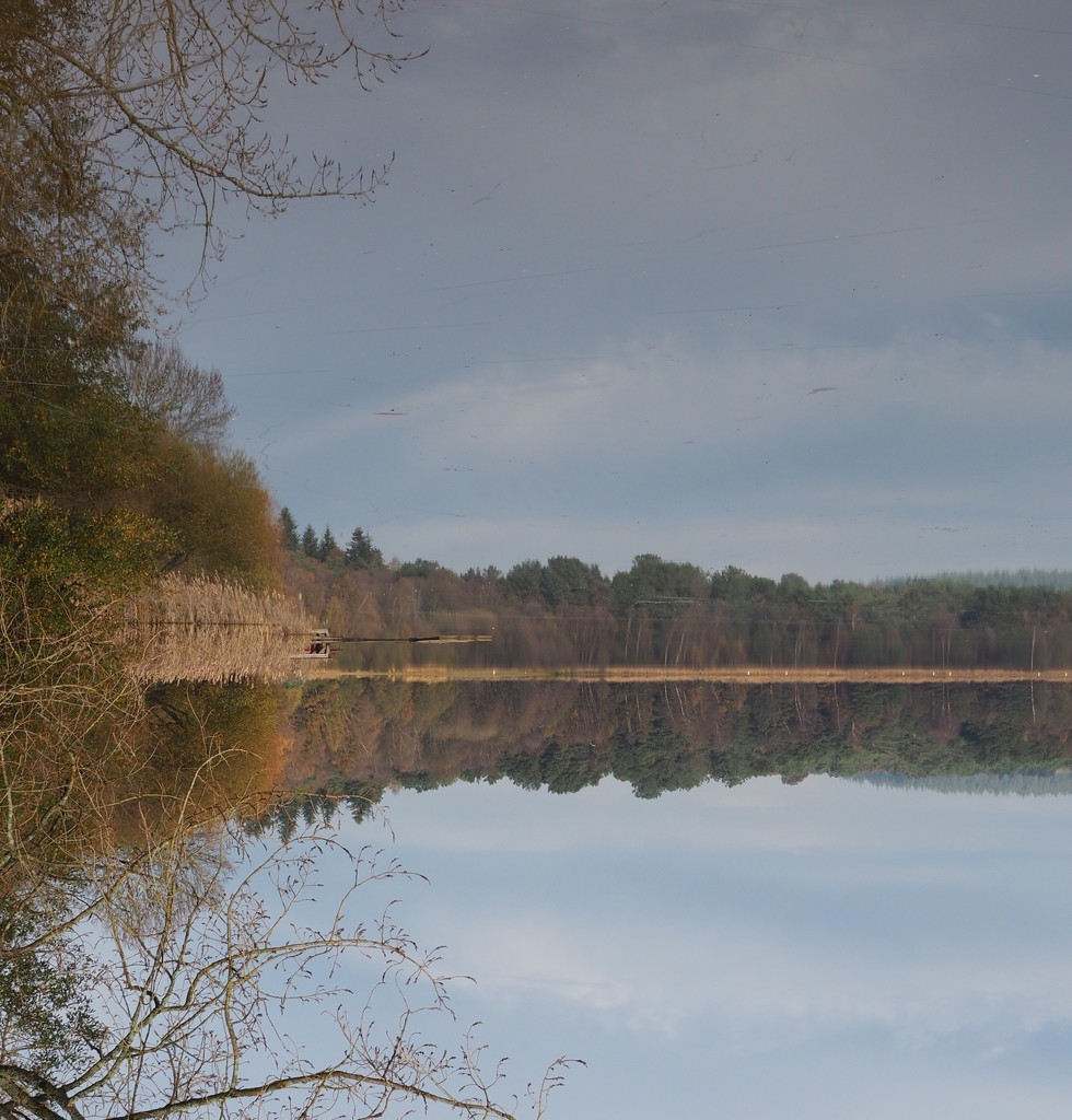 Paimpont Lake & Reflection...flipped! by s4sayer