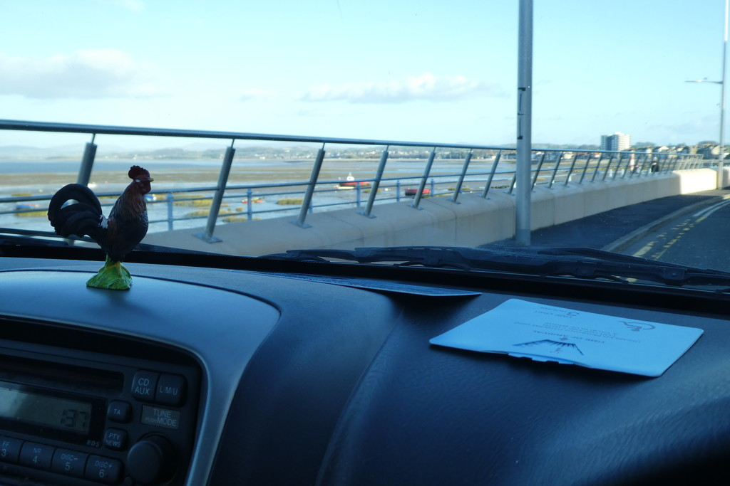 chicken went to Morecambe by anniesue