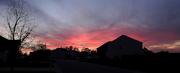 16th Nov 2017 - Pink of Sunset