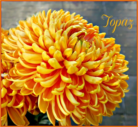 The Colour Of Topaz. by wendyfrost