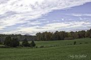 18th Nov 2017 - Virginia Countryside