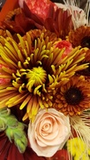 15th Nov 2017 - Fall Bouquet