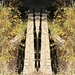 Mirrored Footbridge