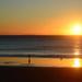 Sunny Sands Sunrise