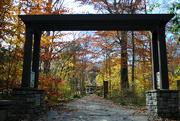 19th Nov 2017 - Archway to Autumn