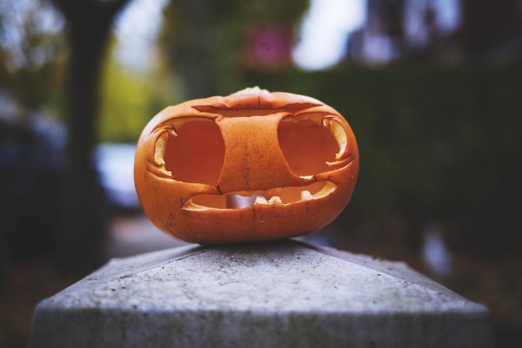 Day 306, Year 5 - Halloween Pumpkin by stevecameras