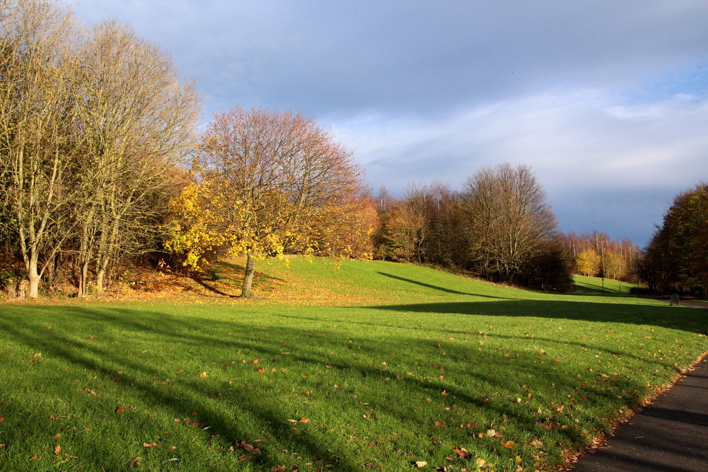 Autumn sunshine by busylady