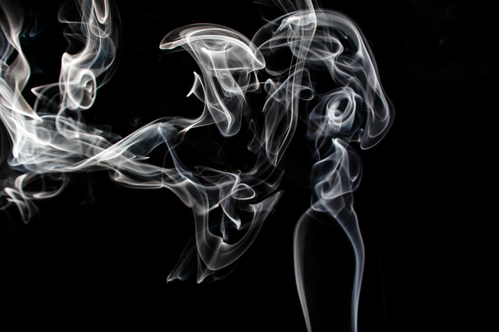 Smoke by batfish