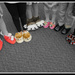 Slippers in the Spotlight