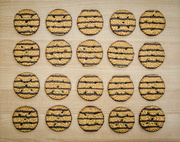 20th Nov 2017 - (Day 280) - Lines of Cookies