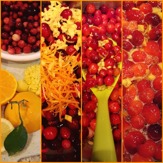 Cranberry Relish by darylo