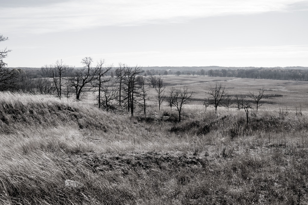 Hilltop BW by rminer